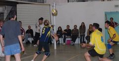 volley-photos-lien.jpg