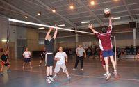 volley2013pti.jpg